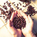 コーヒーの焙煎について 焙煎と味の変化